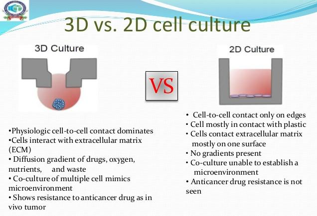 3d-cell-culture-techniques-for-the-tumor-models-5-638